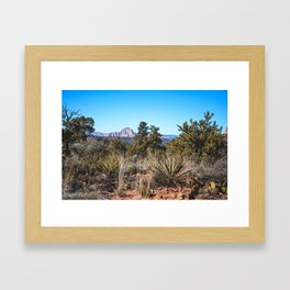 Arizona_6 Framed Art Print