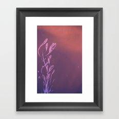 Explosive Sky Framed Art Print