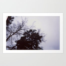 Blue Skys Art Print