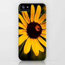 Rudbeckia iPhone Case