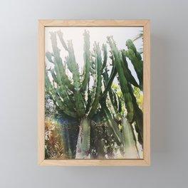 Cactus Desert Photography Framed Mini Art Print