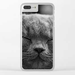 Cat, Cats - Love Cats Clear iPhone Case