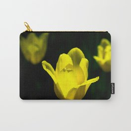 Chips Of Sun Carry-All Pouch