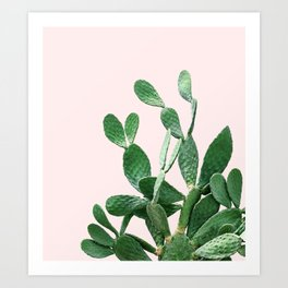 Cactus Opuntia Art Print