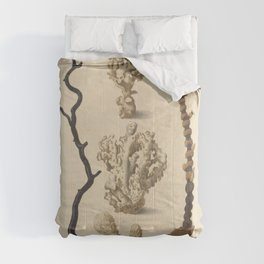 Naturalist Coral Comforters