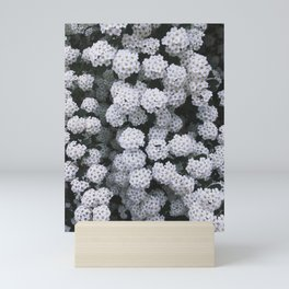 Little White Flowers [Part 2] Mini Art Print