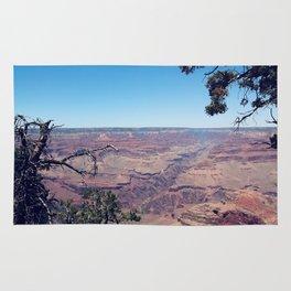 desert at Grand Canyon national park, USA in summer Rug