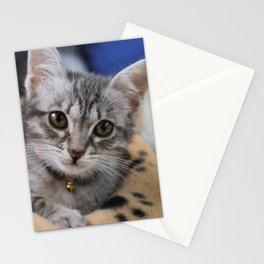 Pharah The Cat Stationery Cards