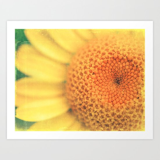 987. sunflower photograph Art Print