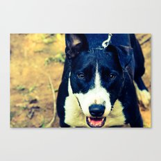 Do I Look Pretty?  Canvas Print
