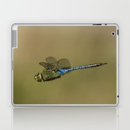 Dragonfly Fly-by Laptop & iPad Skin
