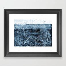 Bluegrass Framed Art Print