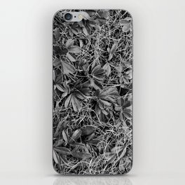 B&W Autumn Turf iPhone Skin