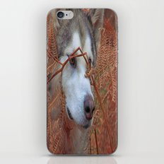 Zeus iPhone & iPod Skin