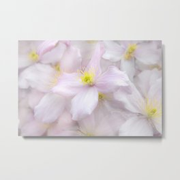 Soft Flora Metal Print
