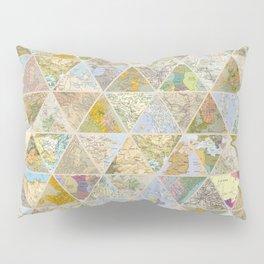 LOST & FOUND Pillow Sham