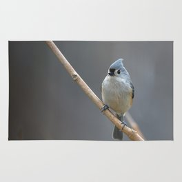 Tufted Titmouse 9639 Rug