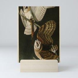 171 Barn Owl Mini Art Print