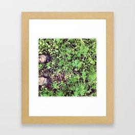 Wet Toes Framed Art Print
