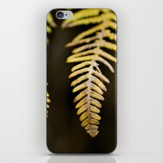 three ferns iPhone & iPod Skin