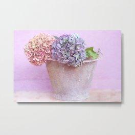 Summer hydrangeas Metal Print