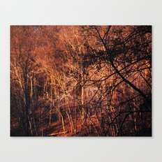Gold Glowing Forest Canvas Print