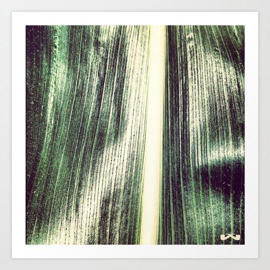 Sheen. Art Print