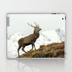 Red Deer Stag in Winter Laptop & iPad Skin
