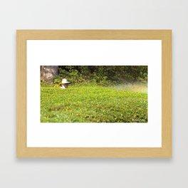 Hong Kong Gardener Framed Art Print