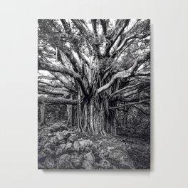 Branching out in Hawaii Metal Print