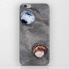 Shells on the sand iPhone Skin