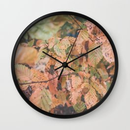 Autumn ground Wall Clock