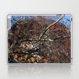 Rusted and Forgotten Laptop & iPad Skin