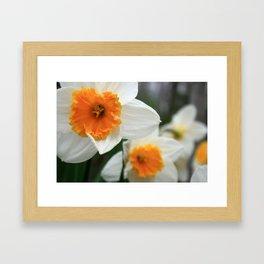 Spring Lovelies Framed Art Print