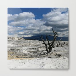 Minerva Spring and Terrace Metal Print