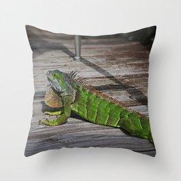 Cayman Iguana I Throw Pillow