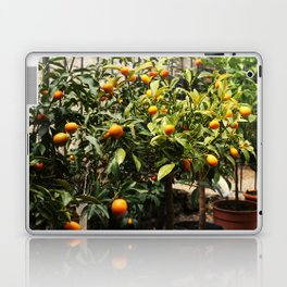 Italian Oranges Laptop & iPad Skin