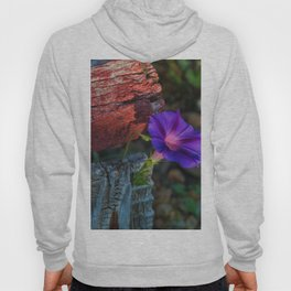 Beautify Hoody