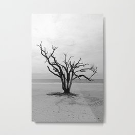 Botany Bay 2 Metal Print
