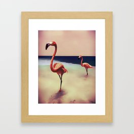 Flamingo beach Framed Art Print