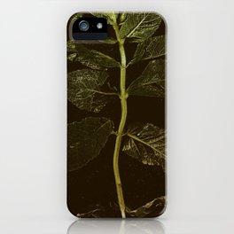 La Menthe iPhone Case