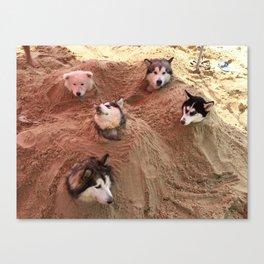 The doggy in beach Canvas Print