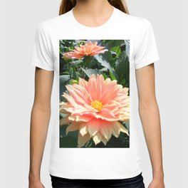 Rondo T-shirt