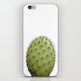 Cactus, Green cactus iPhone Skin
