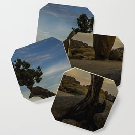 Juniper Tree in Joshua Tree National Park Coaster