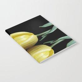 Mirrored Tulip Notebook