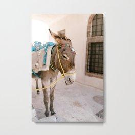 Santorini 0009: Donkey in Pyrgos, Santorini, Greece Metal Print
