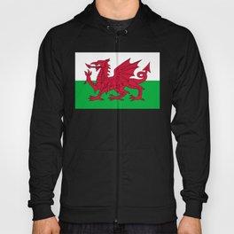 Welsh Flag of Wales Hoody