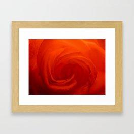 Petal Swirl Framed Art Print