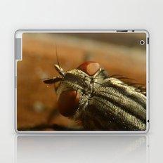 Fly Zone Laptop & iPad Skin